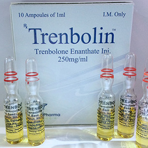 Trenbolone enanthate in USA: low prices for Trenbolin (ampoules) in USA