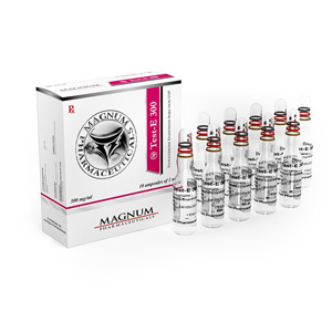 Testosterone enanthate in USA: low prices for Magnum Test-E 300 in USA